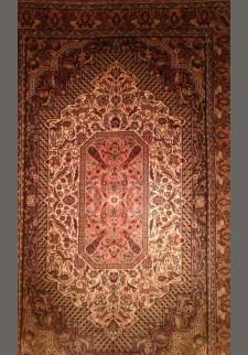 Persian διπλόκομπο